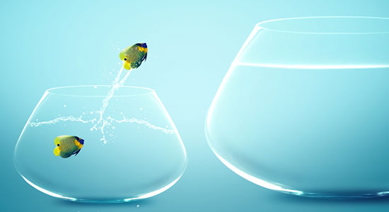 8 Steps to Salesforce Success